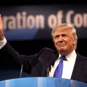 KOMMER DONALD TRUMP ATT BLI USA:S PRESIDENT?